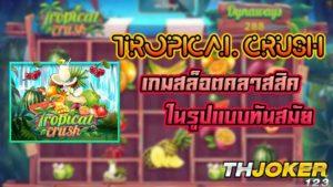 tropical crush-joker gaming